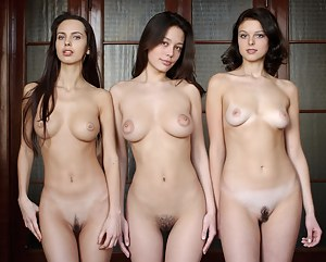 Free Teen Trimmed Pussy XXX Pictures